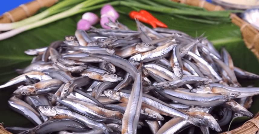 cá cơm