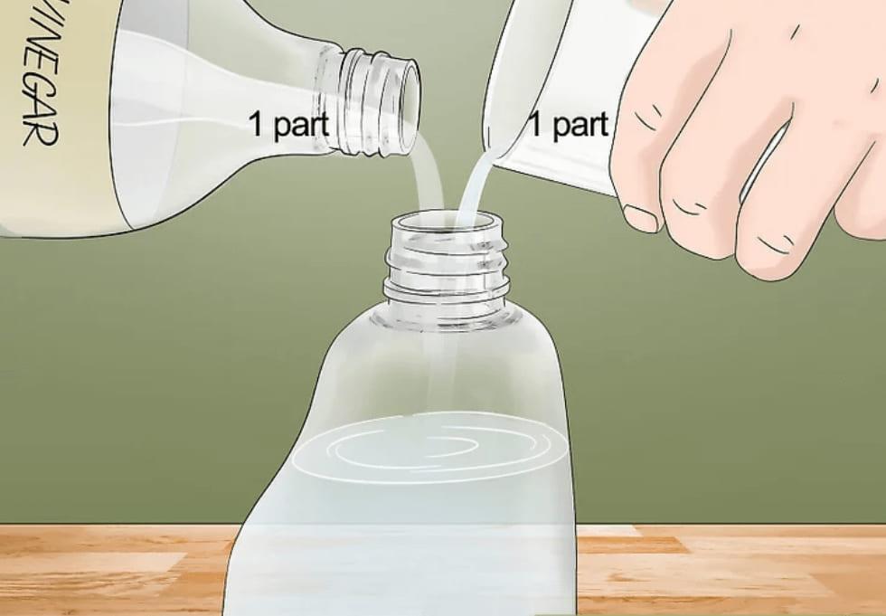 hỗn hợp giấm nước