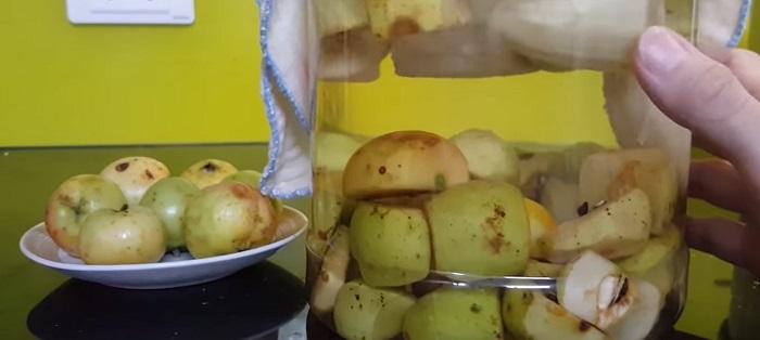 làm giấm táo - A TUẤN KHANG