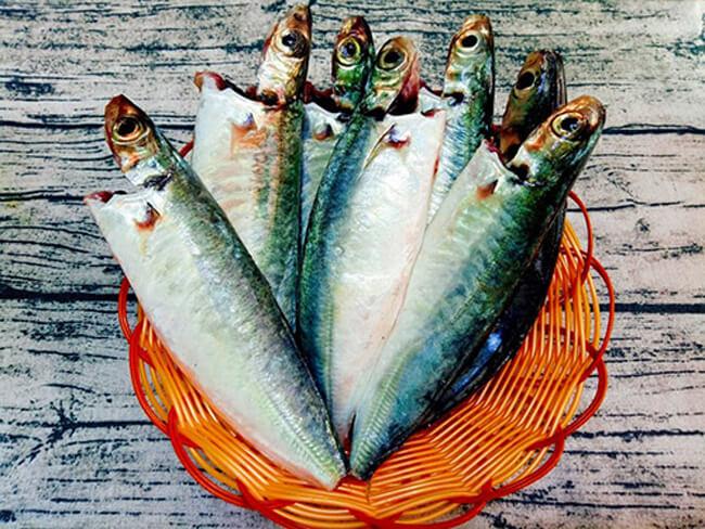 Nguyên liệu cá nục