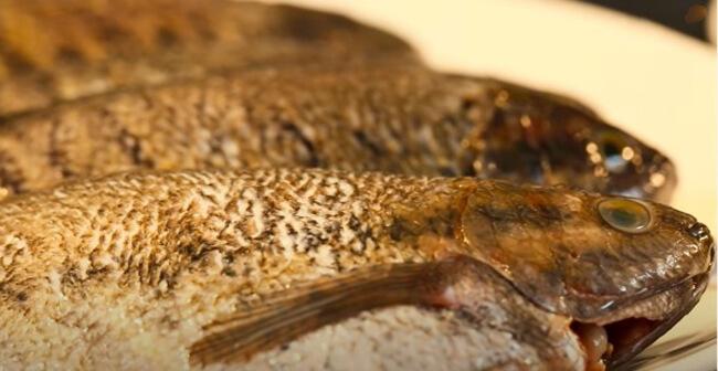 Chuẩn bị nguyên liệu cá