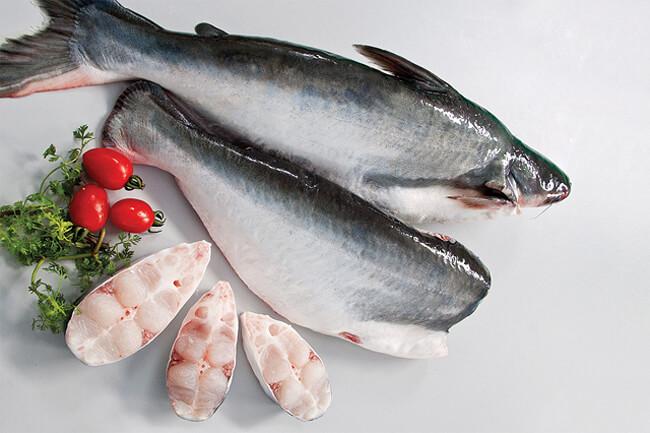 Cách chọn cá da trơn
